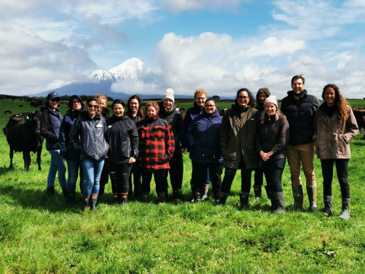 Schurr Ireland Team – making the right connection